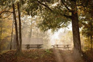Photo - Audubon Acres